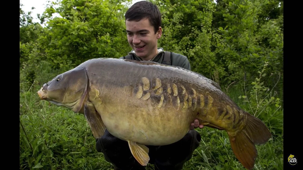 Gallery | Weir Wood Carp & Coarse Fishery